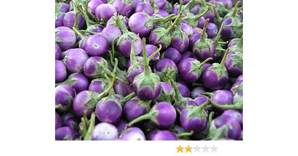 3 bag Eggplant Aubergine Round Green Thai Vegetable Seeds100 Seeds