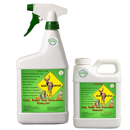 Deer Defeat, Deer, Rabbit and Groundhog Repellent. Special 32 oz RTU and 16 oz Concentrate