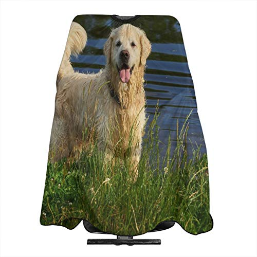 Haircut Cape Golden Retriever Personalized Hairdressing Apron Polyester Hair Cutting Cape for Adults
