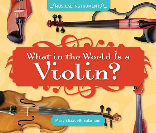 What in the World Is a Violin? (Musical Instruments)