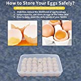 77L Egg Container, 34 Refrigerator Eggs Container