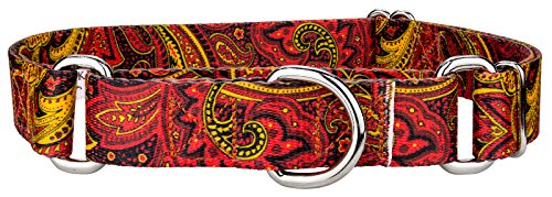 Country Brook Design | Fire Paisley Featherweight Martingale Dog Collar-Extra Small by Country Brook Design