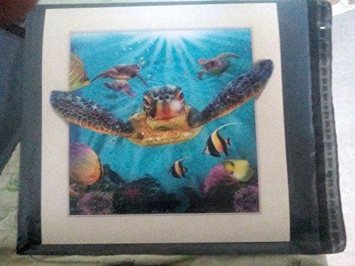 FidgetKute turtle 5D Lenticular Holographic Stereoscopic Picture Wall Art