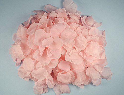 Ben Collection 300 Pieces Silk Rose Petal Wedding Decoration (Pink) (Some Pink Flowers)