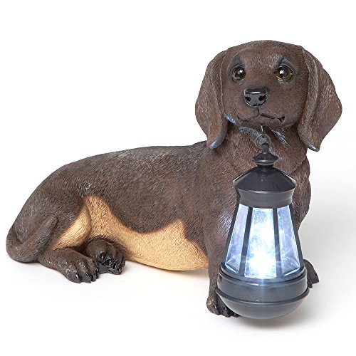 Dachshund Lighting - Bits and Pieces - Dachshund Solar Lantern - Solar Powered Garden Lantern - Resin Dog Sculpture with LED Light - Outdoor Lighting and Décor