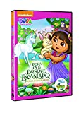 Dora La Exploradora: Aventuras En El Bosque Encantado (Import Movie) (European Format - Zone 2) Cartoons; V
