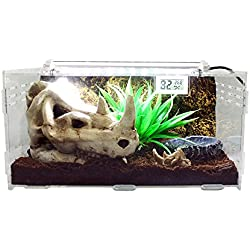 Dalle Craft Acrylic Artificial Landscape Reptile Terrarium 'Landscape of Rhino Skull with grass and Food Tray' for Larval Amphibians