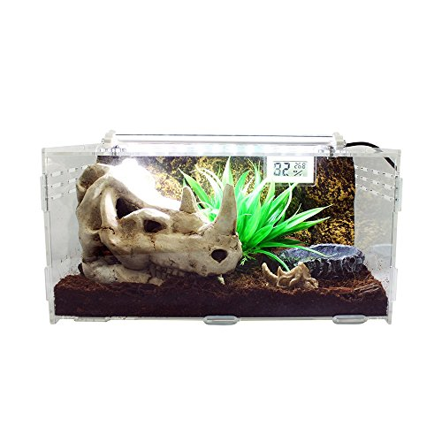 Dalle Craft Acrylic Artificial Landscape Reptile Terrarium 'Landscape of Rhino Skull with grass and Food Tray' for Larval Amphibians by Dalle Craft