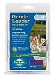 Gentle Leader Quick Release Head Collar, Small, Deep Purple, My Pet Supplies