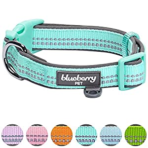 "Blueberry Pet 6 Colors Soft & Comfy Spring 3M Reflective Pastel Color Padded Dog Collar, Mint Blue, Medium, Neck 14.5""-20"", Adjustable Collars for Dogs"