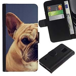 All Phone Most Case / Oferta Especial Cáscara Funda de cuero Monedero Cubierta de proteccion Caso / Wallet Case for Samsung Galaxy S5 V SM-G900 // pug raza perro mascota cachorro terrier de Boston