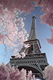 Eiffel Tower Infrared - Paris Poster Print (24 x 36)