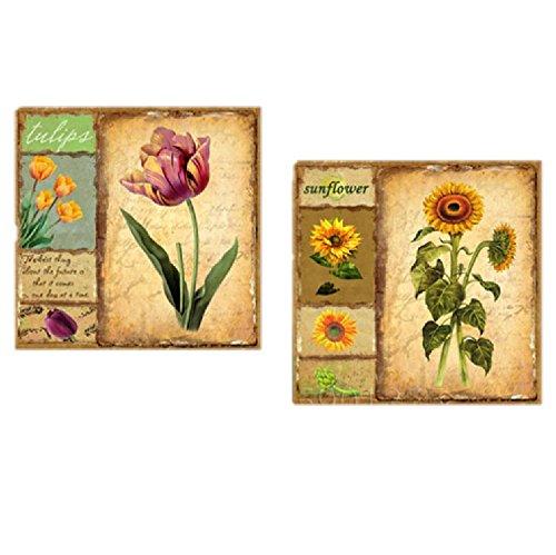 壁掛け アートパネル 【AP001 フラワー 花 80×80㎝×2パネルセット】12㎜キャンバス 印刷布製 キャンバスアート 壁飾り B07DCN7GVF 17592