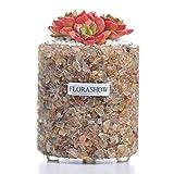 FLORASHOW Succulent Pots, Rutilated QuartzMaterialsMini3.26 inch SucculentPlanter Pot, Ultra-Breathable, Water-Permeable Suitable for Succulents, Cactus, Smaller Plants and More