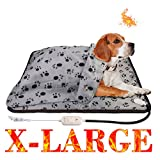 best Heated Dog Bed