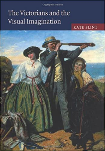 The Victorians and the Visual Imagination by Kate Flint (2008-11-06)