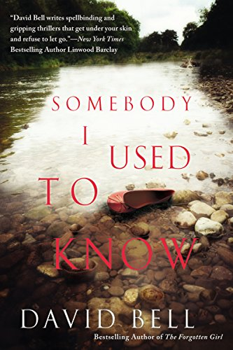 Somebody I Used to Know cover