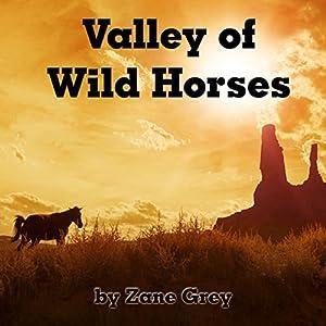 Valley of Wild Horses Audiobook