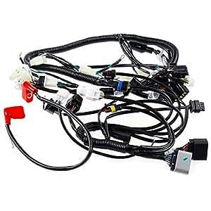 amazon com  wiring loom for lexmoto tempest 125 lj125