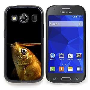 """Qstar Arte & diseño plástico duro Fundas Cover Cubre Hard Case Cover para Samsung Galaxy Ace Style LTE/ G357 (peces de colores divertidos"""")"""