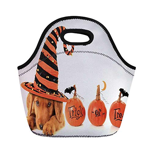 Halloween Durable Lunch Bag,Cute Puppy Wearing a Witch Hat Trick or Treat Little Bats Festive Funny for School Office,11.0