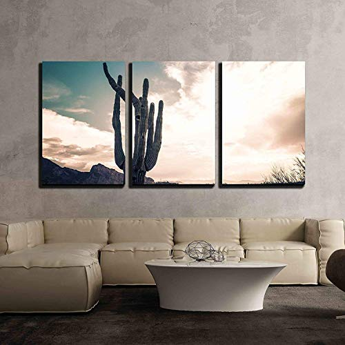 wall26 - 3 Piece Canvas Wall Art - Iconic Saguaro Cactus and Camelback MTN Phoenix, AZ - Modern Home Decor Stretched and Framed Ready to Hang - 16