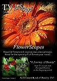 TV Artscapes - FlowerScapes Vol II