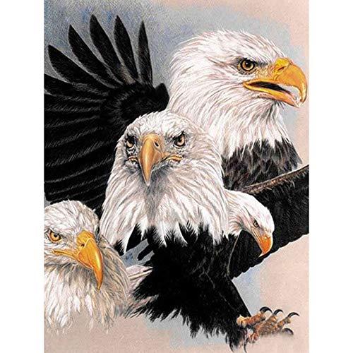 Full Drill Diamond 5D Diy Diamond Painting 3D Embroidery Cross Stitch Rhinestone Mosaic Painting Home Decor - Animal Eagle(Frameless) -