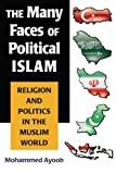 The Many Faces of Political Islam: Religion and Politics in the Muslim World