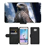Hot Style Cell Phone Card Slot PU Leather Wallet Case // M00129637 Raptor Black Kite Hawk Bird Predator // Samsung Galaxy S6 (Not Fits S6 EDGE)