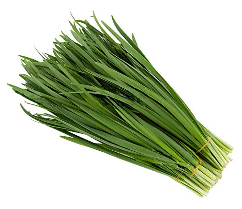 Chive Seeds - Easy to Grow and Organic