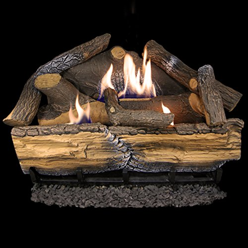 Procom Vent Free Fireplaces - Cedar Ridge Hearth Recon 24-in 32,000-BTU Dual-Burner Vent-Free Gas Fireplace Logs with Thermostat
