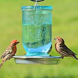 Perky-Pet Mason Jar Wild Bird Waterer 783