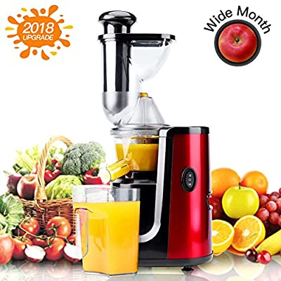 """Juicer Machine Masticating Slow Juicer Extractor, Hornbill"""" Wide Mouth Whole Masticating Juicer with Juice Jug and Brush, Quiet Motor and High Nutrient for Fruit and Vegetable Juice"""
