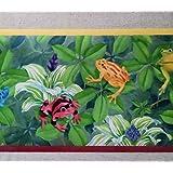 Jungle Rain Forest Frogs Wallpaper Border CC810B