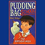Pudding Bag School: The Birthday Wish | Hilary McKay