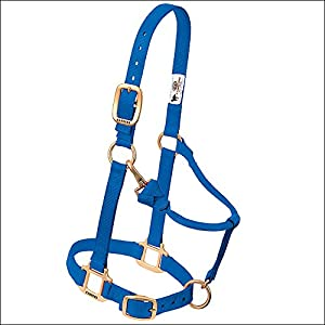 """Weaver Leather 1"""" SM BLU Snap Halter, Small Horse, Blue"""