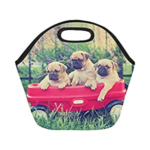 Amazon.com: Interestprint Insulated Lunch Tote Bag Funny