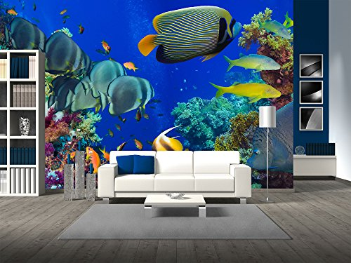 derwater offshore rocky reef with coral and sponges and small tropical fish swimming by in a blue ocean - Removable Wall Mural | Self-adhesive Large Wallpaper - 100x144 inches (Ocean Wall Murals)