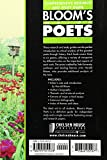 Shakespeare's Poems & Sonnets (Bloom's Major Poets)