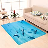 Nalahome Custom carpet ons Group of Dolphins in Hawaii Wildlife Underwater Animals Tropical Aquatic Nature Picture Blue area rugs for Living Dining Room Bedroom Hallway Office Carpet (5' X 7')