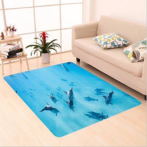 Nalahome Custom carpet ons Group of Dolphins in Hawaii Wildlife Underwater Animals Tropical Aquatic Nature Picture Blue area rugs for Living Dining Room Bedroom Hallway Office Carpet (5' X 7') by Nalahome