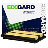 ECOGARD XA10423 Premium Engine Air Filter Fits Nissan Rogue, Rogue Sport