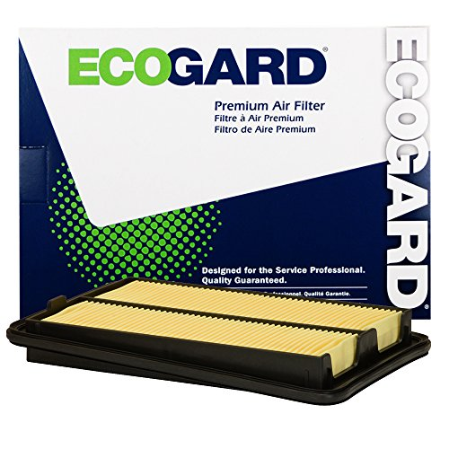 ECOGARD XA10423 Premium Engine Air Filter Fits Nissan Rogue, Rogue Sport (Air Rogue Cabin Filter Nissan)