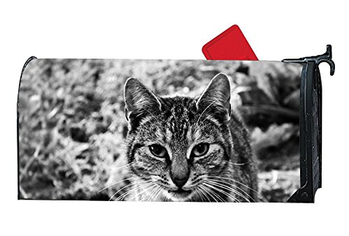 Amazon.com : Mailbox Cover - Decorative Magnetic Mailbox El Gato Se Convierte En Peluche Design, Surrounds all 6.5