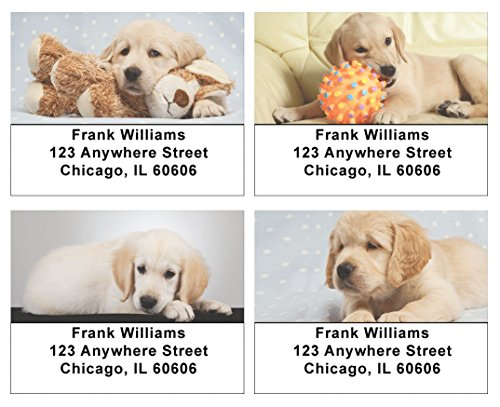 Golden Retriever Puppies Address Labels (Dog Address Labels)