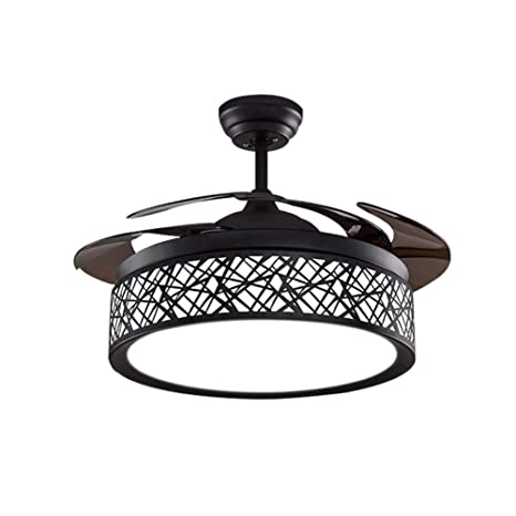 Amazon.com: 42 inch Black Bird-Cage Ceiling Fan with Light ...