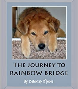 The Journey to Rainbow Bridge (Short Tales Book 11)