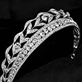 Sunshinesmile Wedding Bridal Tiara Crystal Silver Rhinestone Leaf Pageant Crown Veil Headband