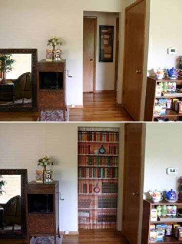 Amazon.com: Bookcase Beaded Curtain 125 Strands (+hanging hardware ...